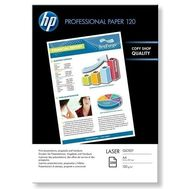 HP Professional